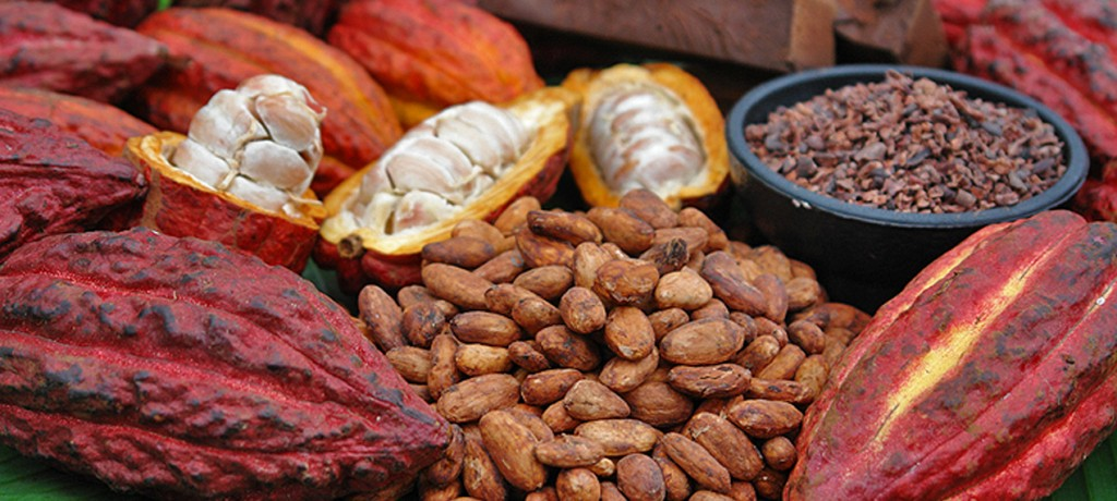 Brazil relaunched chocolate tourism offer