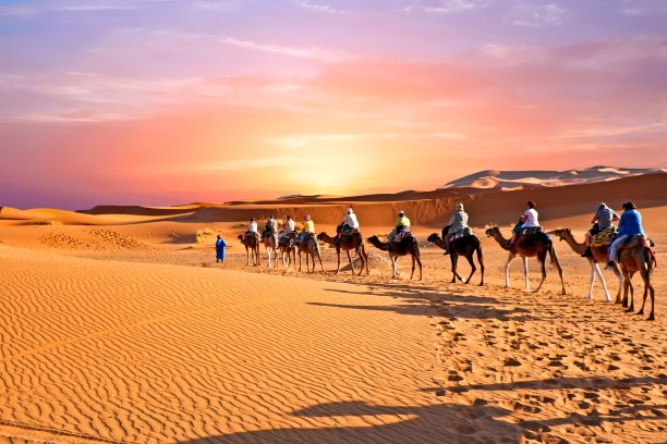 Moroccan Tourism reported more arrivals