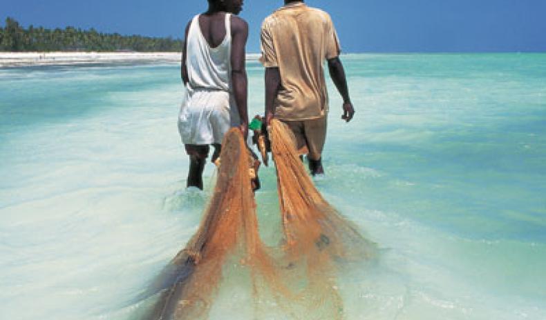 BEACH TOURISM: TANZANIA'S NEW HOPE