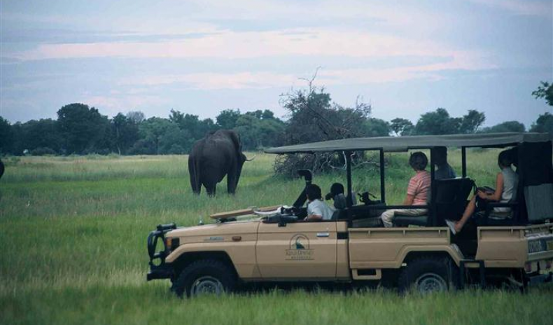 LEARN HOW TO SURVIVE IN BOTSWANA'S WILDERNESS