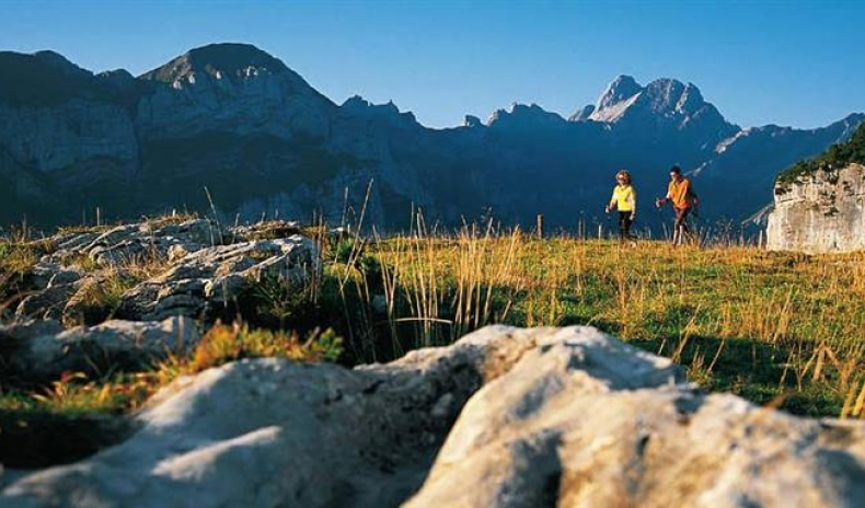 SWISS TOURISM INDUSTRY FIGHTS A DECLINE IN DEMAND