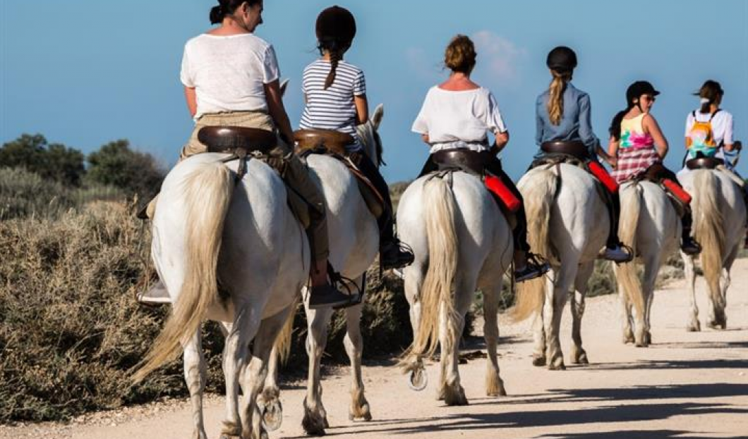 EQUESTRIAN TOURISM IS GALLOPING BACK TO POPULARITY IN FRANCE