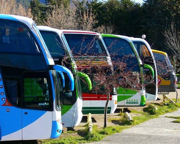 Six Best Budget Bus Companies in the U S  |  TR