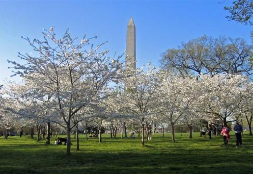 WASHINGTON DC TOURISM RISES IN WAKE OF CRISIS