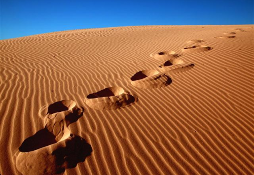 FURTHER DEVELOPMENT OF THE ALGERIAN TOURISM SECTOR