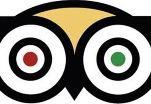 TRIPADVISOR BENEFITS FROM COLLABORATION WITH FACEBOOK