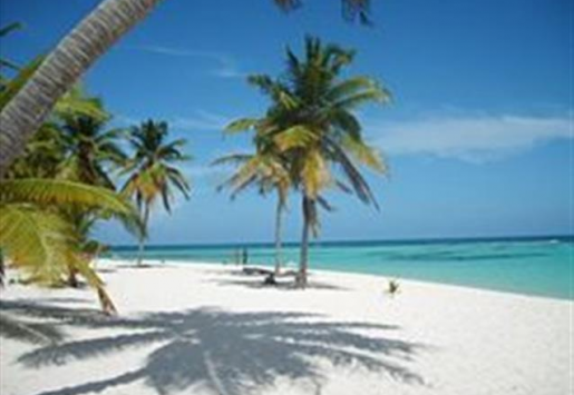 DOMINICAN REPUBLIC: TOURISM MINISTER OPTIMISTIC ABOUT 2013