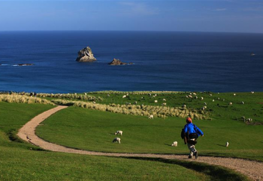 NEW CHINESE LAW AIDS NEW ZEALAND TOURISM