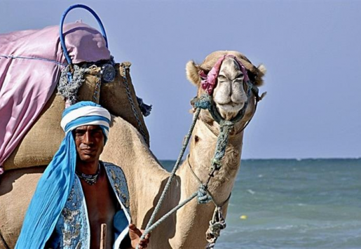 TUNISIAN TOURISM RELIES ON ALGERIAN AND RUSSIAN VISITORS