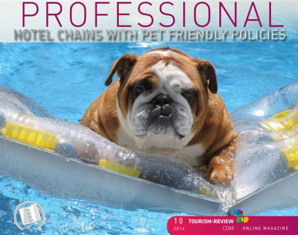 PROFESSIONAL/ Hotel Chains with Pet Friendly Policies