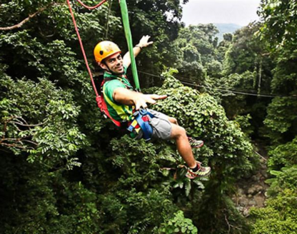 Jungle Surfing: A One-of-a-kind Adventure through the Oldest Rainforest
