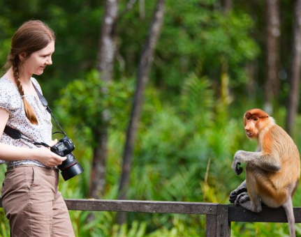 Taking Animal Selfie – Risky Business for All Parties
