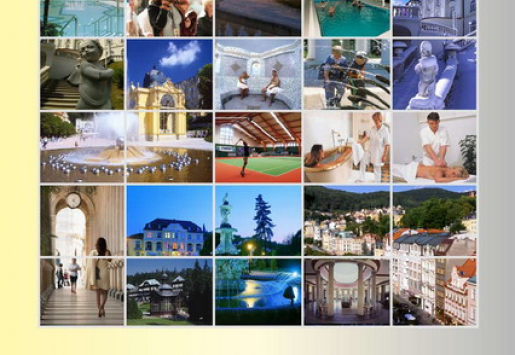 SUPPLEMENT: SPA Resorts of The Czech Republic