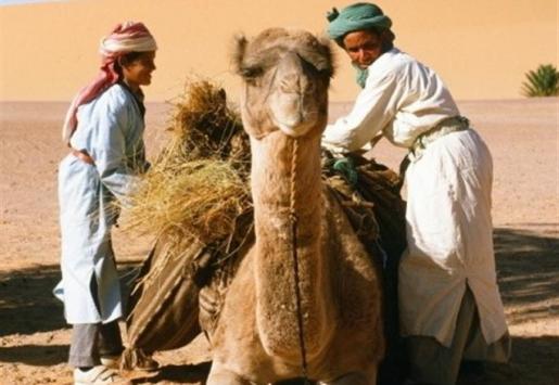 Explore Algeria's Historic, Cultural and Natural Attractions